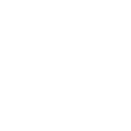 Icon Handschuhe